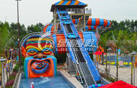 Big Snake Water Slide Water Park Equipment , Customized Fiberglass Water Slides